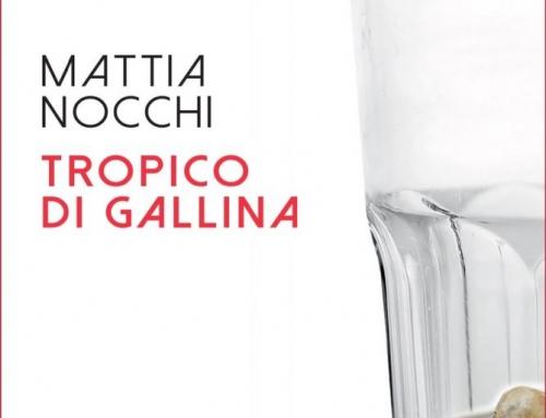 Tropico di Gallina di Mattia Nocchi